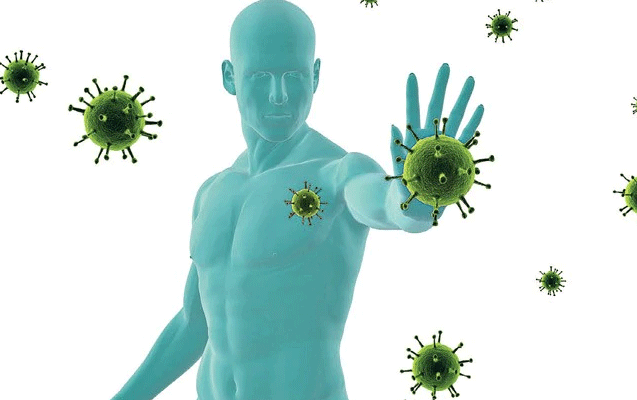 Representation of the Immune System.